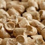energetyczny biomasa