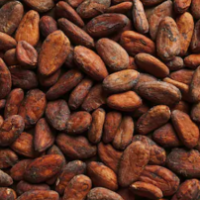 cocoa-beans-
